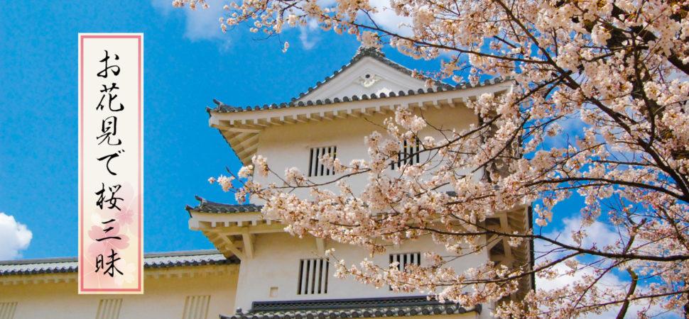 お花見で桜三昧